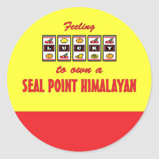 Lucky to Own a Seal Point Himalayan Fun Cat Design