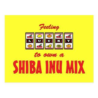 Lucky to Own a Shiba Inu Mix Fun Dog Design Postcard