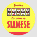 Lucky to Own a Siamese Fun Cat Design Classic Round Sticker