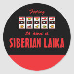 Lucky to Own a Siberian Laika Fun Dog Design Round Sticker