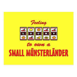 Lucky to Own a Small Münsterländer Fun Dog Design Postcard