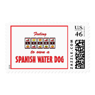 Lucky to Own a Spanish Water Dog Fun Dog Design Stamps