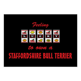 Lucky to Own a Staffordshire Bull Terrier Print