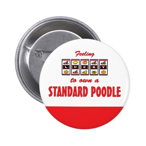 Lucky to Own a Standard Poodle Fun Dog Design Button