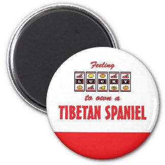 Lucky to Own a Tibetan Spaniel Fun Dog Design Magnet