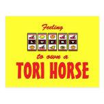 Lucky to Own a Tori Horse Fun Design Post Cards