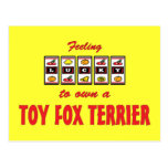 Lucky to Own a Toy Fox Terrier Fun Dog Design Post Card