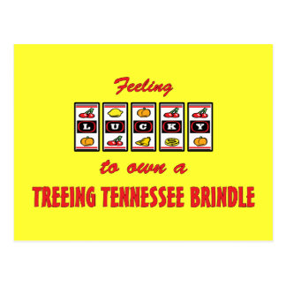 Lucky to Own a Treeing Tennessee Brindle Postcard
