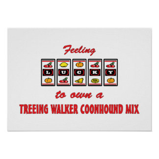 Lucky to Own a Treeing Walker Coonhound Mix Posters