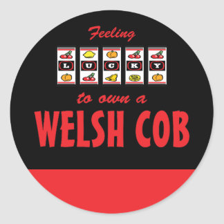 Lucky to Own a Welsh Cob Fun Pony Design Stickers