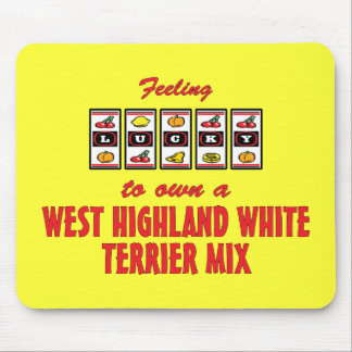 Lucky to Own a West Highland White Terrier Mix Mouse Pad