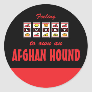 Lucky to Own an Afghan Hound Fun Dog Design Classic Round Sticker