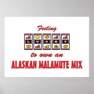 Lucky to Own an Alaskan Malamute Mix Fun Design Poster