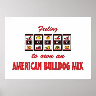 Lucky to Own an American Bulldog Mix Fun Design Posters