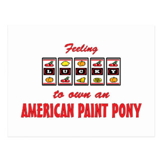 Lucky to Own an American Paint Pony Fun Design Postcard