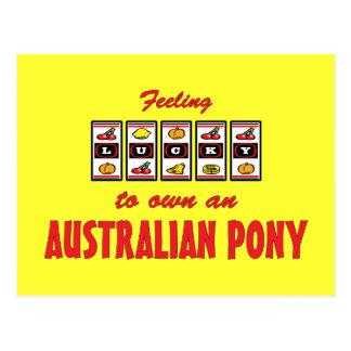 Lucky to Own an Australian Pony Fun Design Postcard