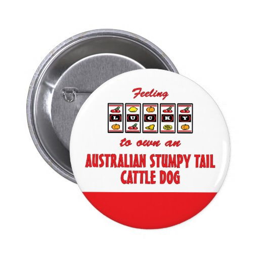 Lucky to Own an Australian Stumpy Tail Cattle Dog Button