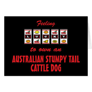 Lucky to Own an Australian Stumpy Tail Cattle Dog Greeting Cards