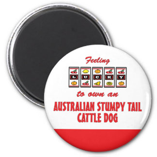 Lucky to Own an Australian Stumpy Tail Cattle Dog Magnets