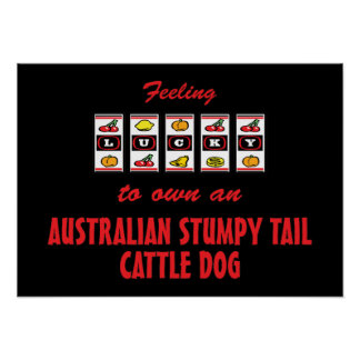 Lucky to Own an Australian Stumpy Tail Cattle Dog Print