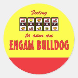 Lucky to Own an EngAm Bulldog Fun Dog Design Classic Round Sticker
