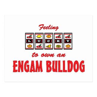 Lucky to Own an EngAm Bulldog Fun Dog Design Postcard