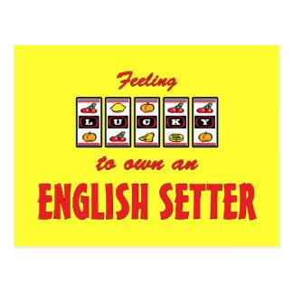 Lucky to Own an English Setter Fun Dog Design Postcard