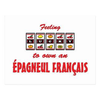 Lucky to Own an Épagneul Français Fun Dog Design Postcard