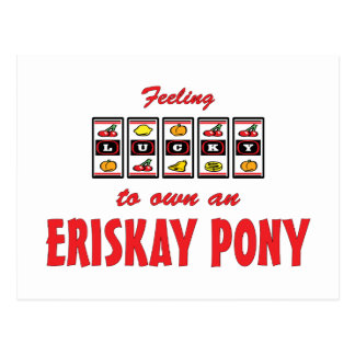 Lucky to Own an Eriskay Pony Fun Design Postcard