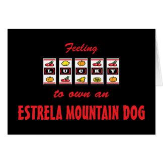 Lucky to Own an Estrela Mountain Dog Fun Design Card