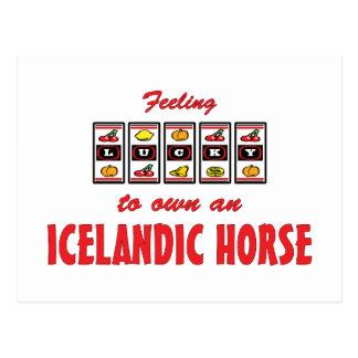 Lucky to Own an Icelandic Horse Fun Design Postcard