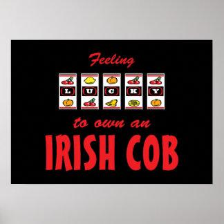 Lucky to Own an Irish Cob Fun Horse Design Poster
