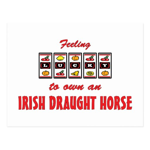 Lucky to Own an Irish Draught Horse Fun Design Postcard