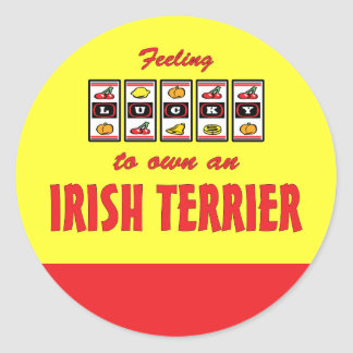 Lucky to Own an Irish Terrier Fun Dog Design Classic Round Sticker