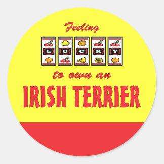 Lucky to Own an Irish Terrier Fun Dog Design Classic Round Sticker