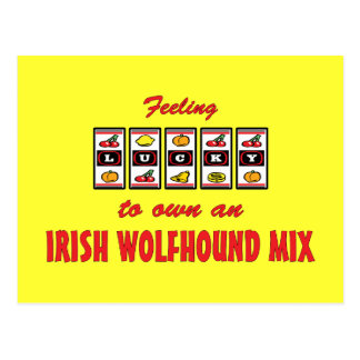 Lucky to Own an Irish Wolfhound Mix Fun Dog Design Postcard