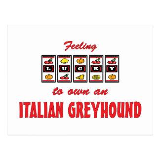 Lucky to Own an Italian Greyhound Fun Dog Design Post Card