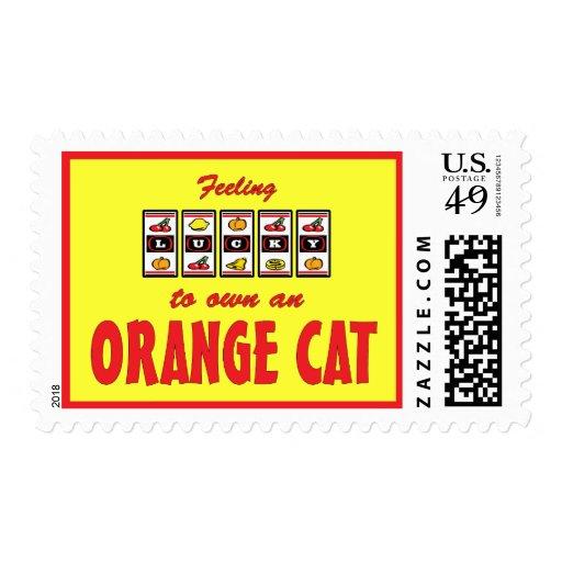 Lucky to Own an Orange Cat Fun Cat Design Stamp