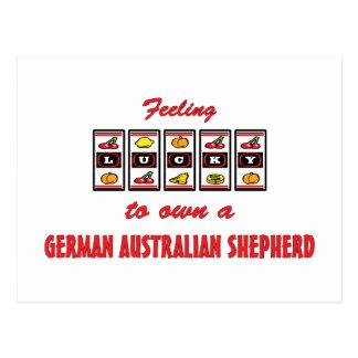 Lucky to Own German Australian Shepherd Fun Design Postcard