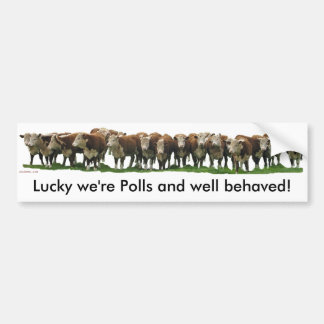 Lucky we're Poll Herefords Car Bumper Sticker