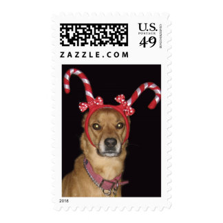 Lucy Holiday Postage Stamps