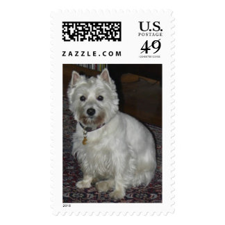 Lucy Stamp
