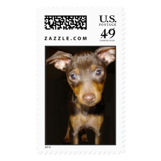 lucy the dog stamp