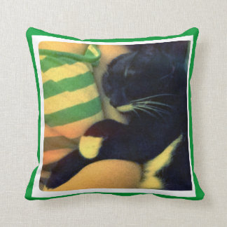 Lucy's Snuggles Throw Pillows