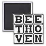 Ludwig Van Beethoven, Composer Magnets