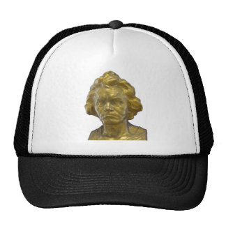 Ludwig van Beethoven Gorro