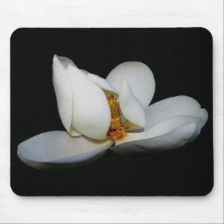 lugar central de la magnolia meridional alfombrillas de raton