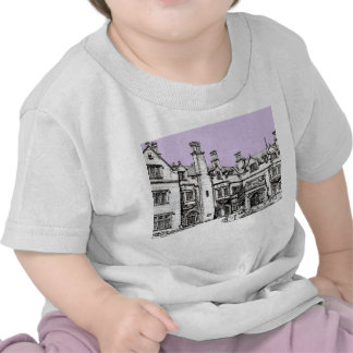 Lugar de la lila de Pasillo del laurel Camisetas