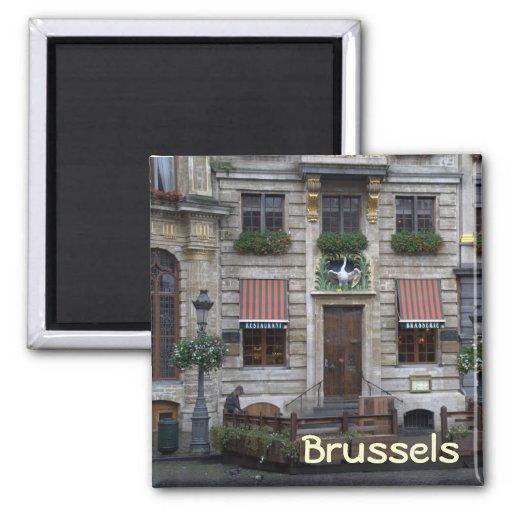 Lugar magnífico, Bruselas Imán Cuadrado