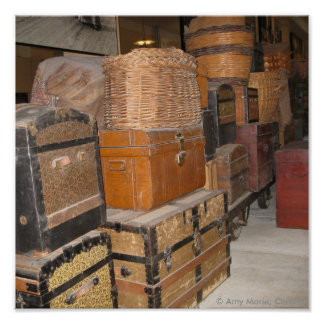 Luggage Print